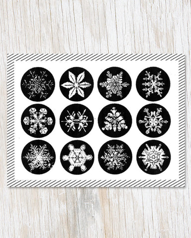 Snowflake Science Greeting Card - Cognitive Surplus