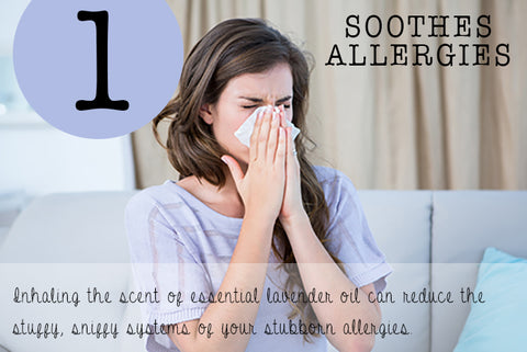 Lavender soothes allergies