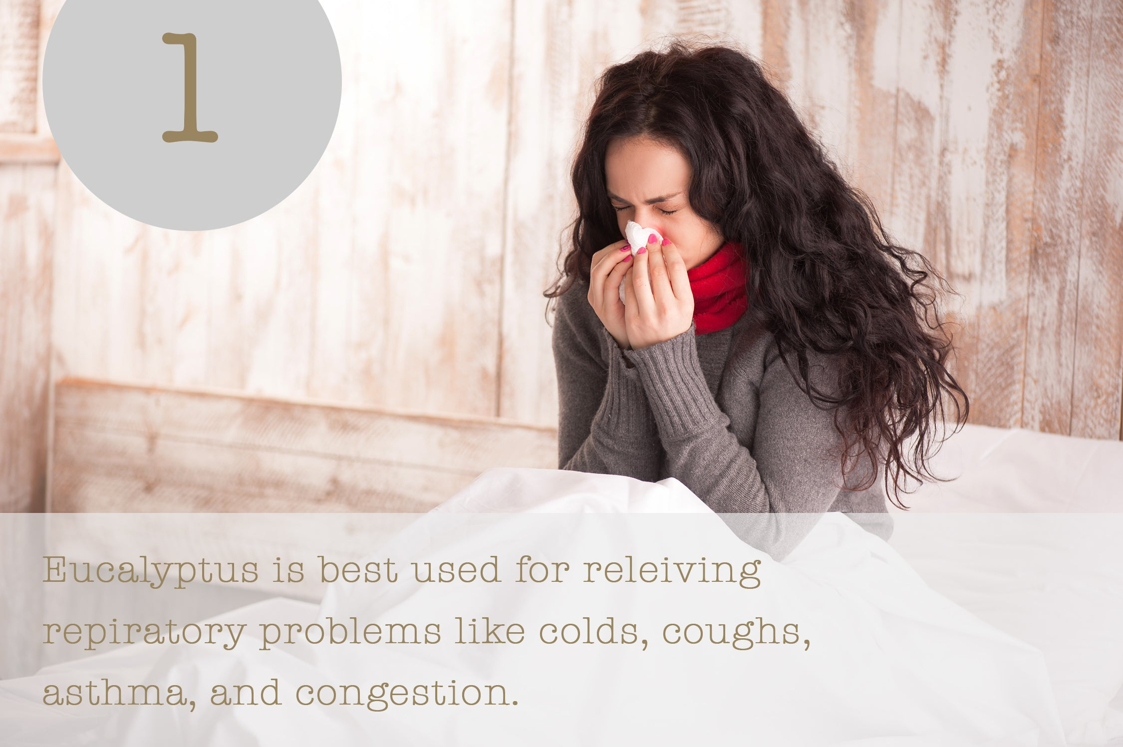 Eucalyptus is best used for releiving repiratory problems like colds, coughs, asthma, and congestion.