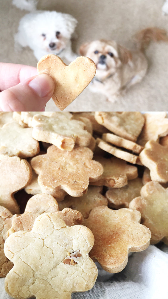natural healthy coconut oil and peanut butter dog treats