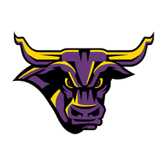 Minnesota State Mavericks