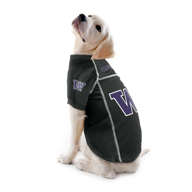 University of Washington Huskies Team Jersey on a Dog