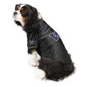 University of Washington Huskies Pet Stretch Jersey on a Dog