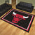 Chicago Bulls 8x10 Plush Area Rug