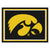 Iowa Hawkeyes 8x10 Plush Area Rug