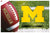 Michigan Wolverines Home Floor Mat