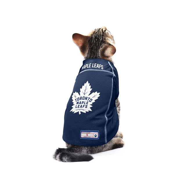 Toronto Maple Leafs Team Jersey on a Cat