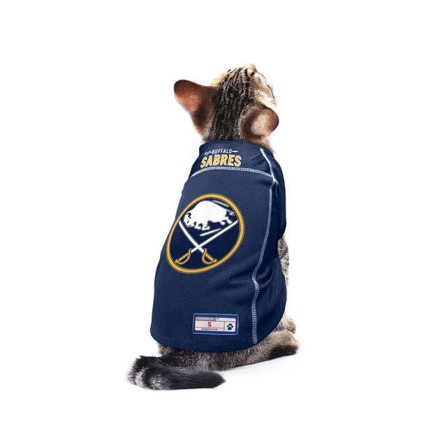 Buffalo Sabres Team Jersey on a Cat