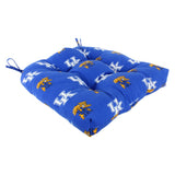 Kentucky Wildcats Outdoor Seat Cushion