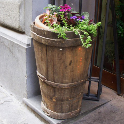 Tuscan Style Home Décor: A Guide The 5 Main Things to Know - A vintage Italian grape harvesting basket, once used in an Italian vineyard, is creatively repurposed as a flower planter.