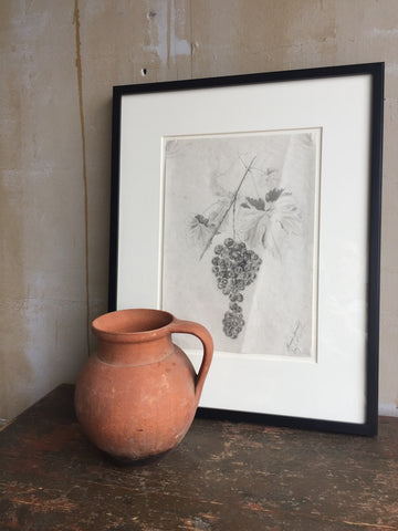 Antique Pencil Drawing Of Grapes