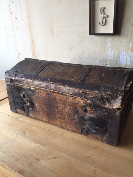 Italian Antique Trunk - 18th Century - Mercato Antiques - 1