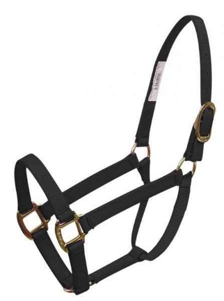 BMB  Classic halter with brass plated hardware and adjustable crown