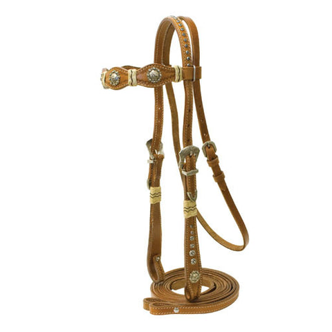 ANTIQUE COWBOY BRIDLE
