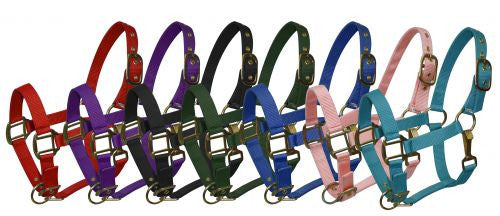 Pony size nylon halter is constructed of triple ply nylon with brass hardware