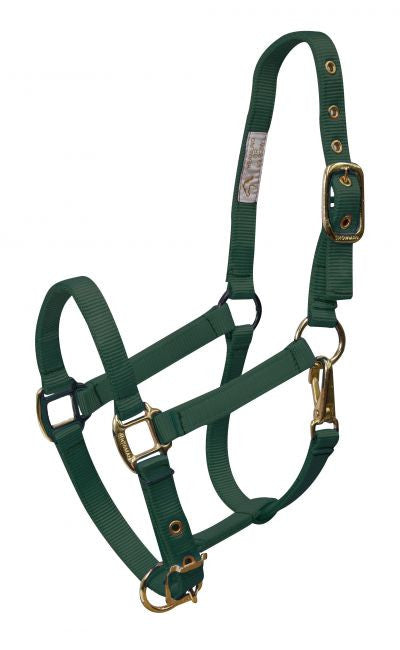 Showman Weanling size adjustable nose & throat latch halter