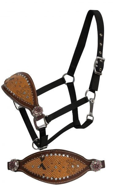 Showman FULL SIZE Bronc halter with orange snake print overlay