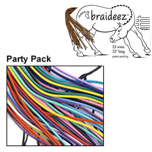 Braideez Wire Braiding Bands Party Pack