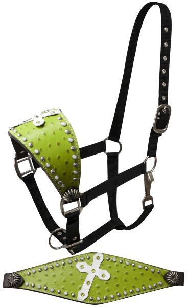 Showman FULL SIZE Bronc halter faux lime green ostrich leather and an angled white leather cross