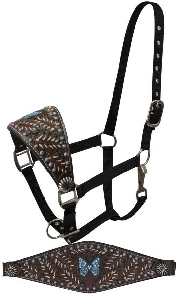 Showman FULL SIZE Bronc halter with painted tooling and blue painted butterfly