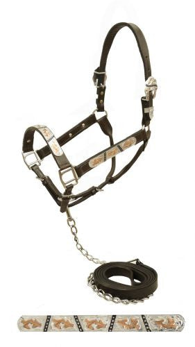 Showman Dark leather show halter with engraved silver plates accented with engraved copper and silver studded black inlays