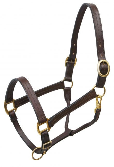 Large horse size (1100-1600lbs) leather halter with brass hardware