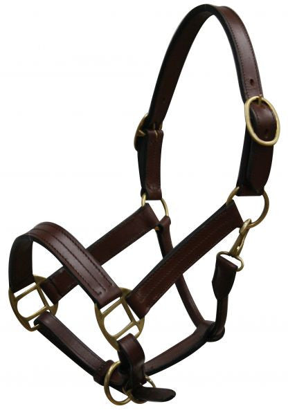 Yearling size leather halter with brass hardware