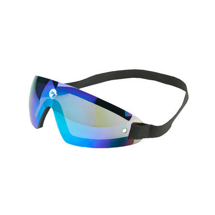 FT Race Goggles, USA