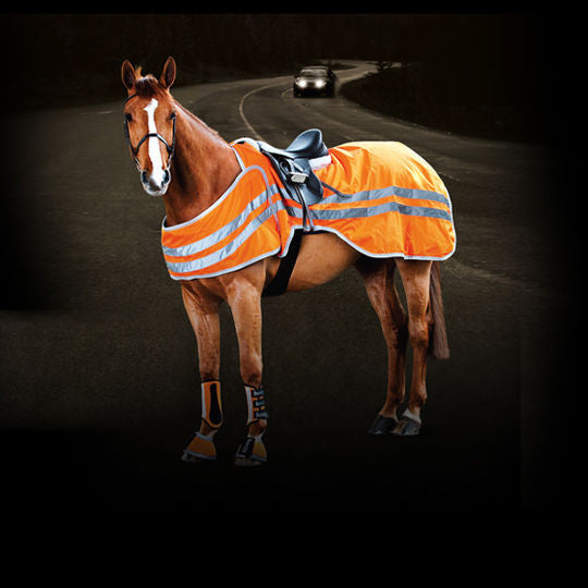 Horze Reflective Gear Horse Set