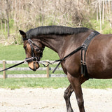 Horze Lunging Training System, Starter Kit