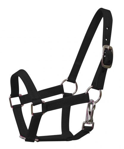 Nylon halter with nickel plated hardware and throat latch. Mini size.