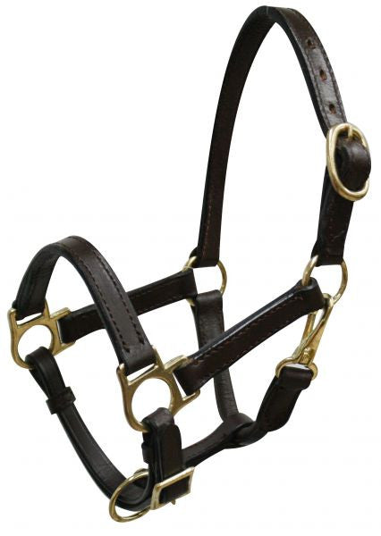 Weanling/Small Pony size leather halter with brass hardware.  Comes with double buckles on crown, adjustable nose and throat latch.