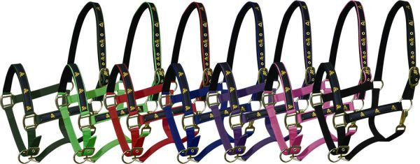 "Neoprene lined horse size nylon halter with ""barrel horse"" overlay."