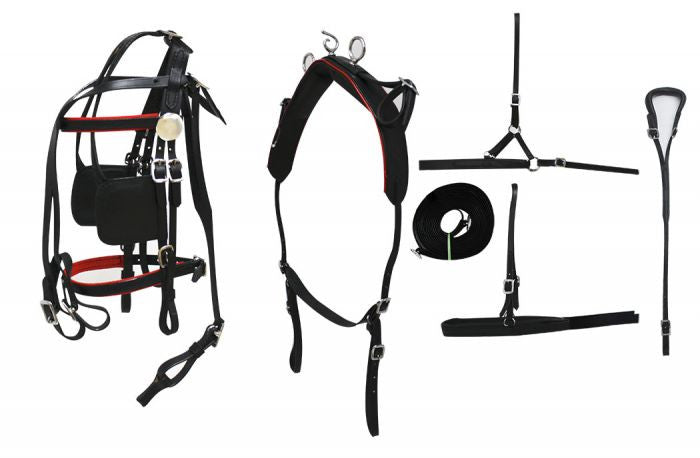 Small to Medium Pony Leather Show Harness Set