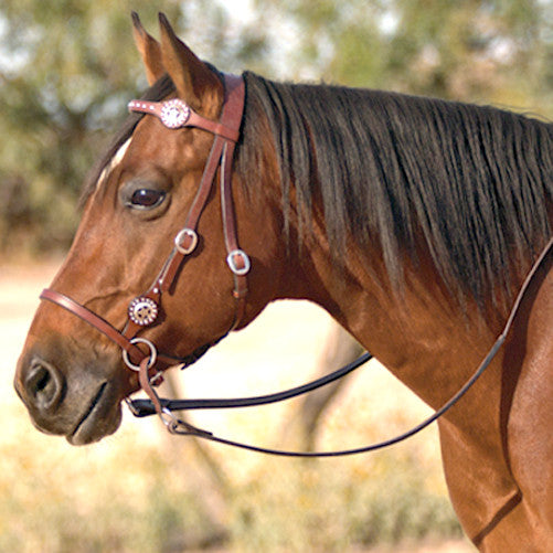 Nurtural Horse Elite Leather Western Bitless Bridle-Arab/Cob