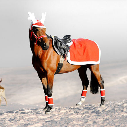 Horze Santa riding rug