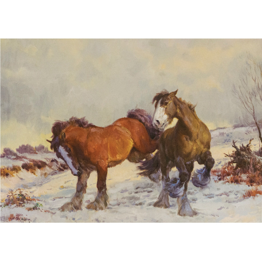 Christmas Cards Winter Playmates 10 pack – Dark Horse Tack Company