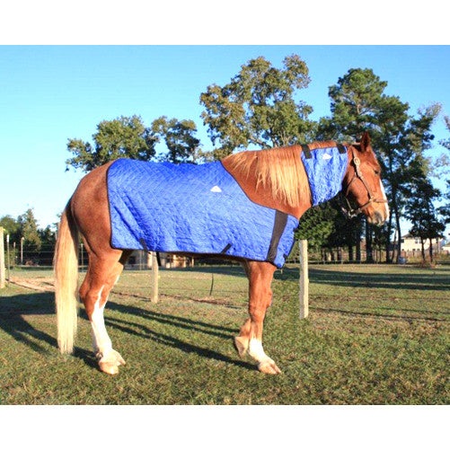 Techniche HyperKewl™ Evaporative Horse Cooling Blanket-Blue SM-M