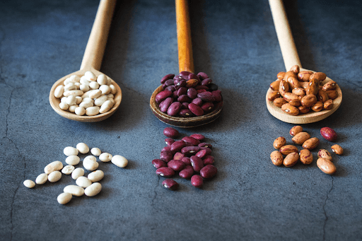 rice and beans are a vegetarian source of protein