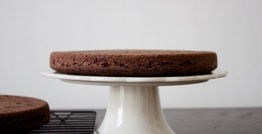 Vegan Spelt Chocolate Cake with Chocolate Coconut Frosting