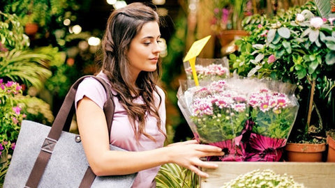 Top tips for buying flowers