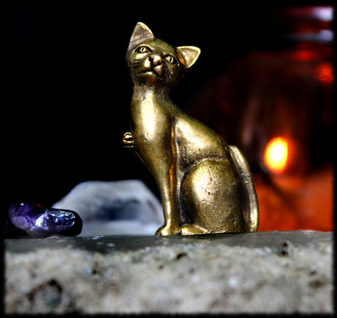 ~? HAUNTED FELINE FAMILIAR, PROTECTOR, WATCHER! ?~ Powerful Magickal HYBRID Cat SPIRIT Entity! - Estrella Magick - 1