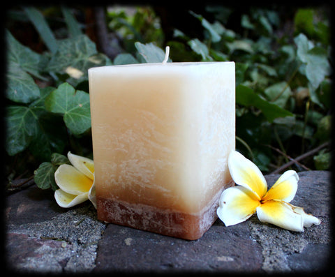 *BLESSED! ~*Protection & Positivity Vanilla Jasmine Charged Pillar Candle*~ For Positive Energy! Spell Cast Blessings Wicca Candle Magick - Estrella Magick - 1