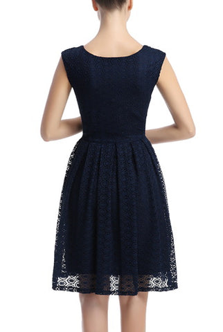 PHISTIC Women's Lace Skater Dress (Regular & Plus Size)