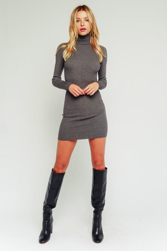 Alaysia Ribbed Turtleneck Dress