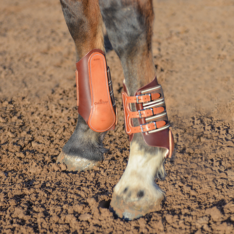 Leather Splint Boot by Classic Equine