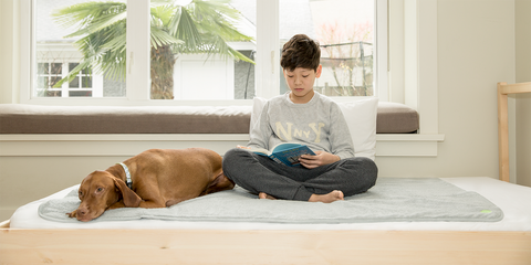 boy and dog sitting on top of PeapodMats reusable bedwetting mat
