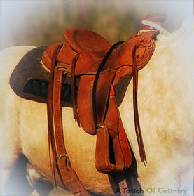 Saddlery & Accessories