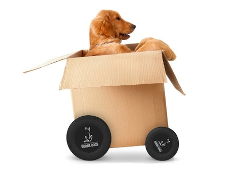 bobbie dogs shipping