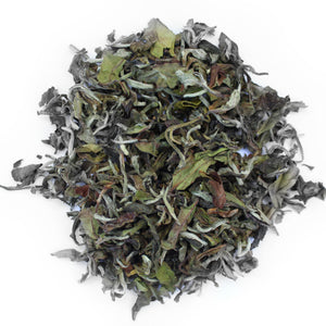 Rohini Estate: Rare Darjeeling First Flush 100g